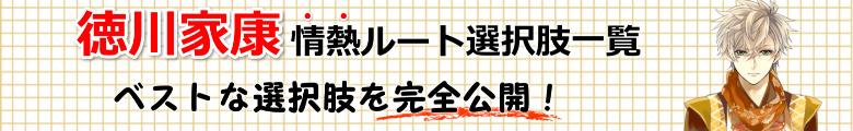 徳川家康情熱ルート選択肢